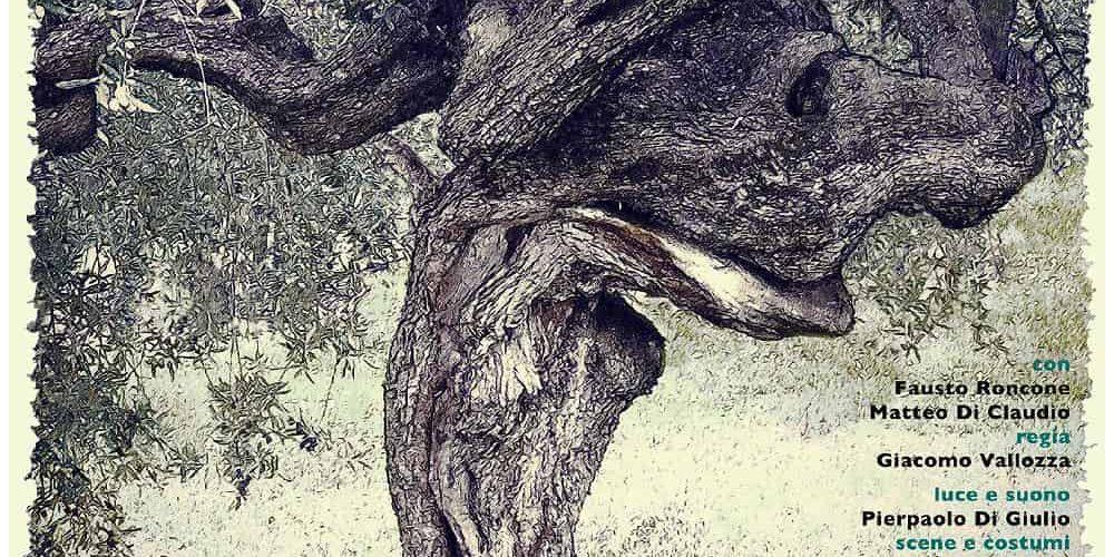 mio nonno l'olivo a VACRI